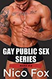 Gay Public Sex Series: Books 1-8