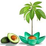 Tazn de Plantacin de Aguacate MOSRACY: cultive sus propios aguacates, regalos de jardn para mams y mejores amigos,los mejores regalos para iniciadores de semillas de huertosSin semillas