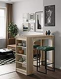 Temahome Aravis Table Bar Avec Rangements, Panneaux de Particules Mélaminés, Chêne, 115 X 50 X 102,7 cm (LxPxA)
