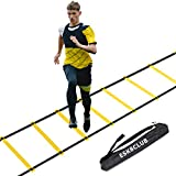 Strailboard Agility Ladder Speed Training Equipment 12 Rung 20ft Agility Ladder for Kids and Coaches Home Workout Ladder with Carrying Bag for Ground, Improves Speed and Coordination
