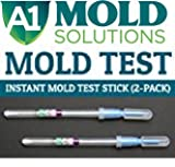 Instant Home Mold Test