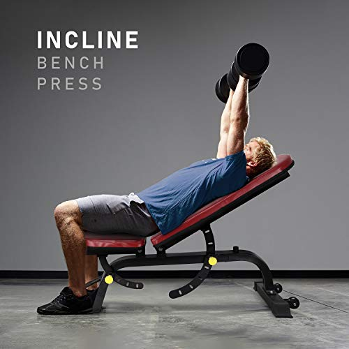 419w2IjWBZL - Home Fitness Guru