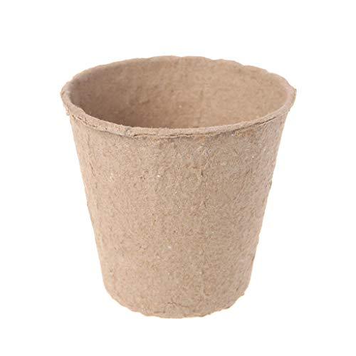 Lazder - Set di 50 contenitori di carta per germogli e piantine, biologici, biodegradabili, ecologici, per la coltivazione domestica