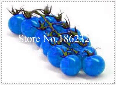 Generic Fresh 100 pcs SEMILLA de tomate orgánico vegetal pa