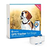 Tractive LTE GPS Dog Tracker - Location & Activity Tracker for