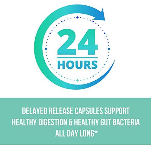 MAV Nutrition Probiotics + Prebiotics for Digestive Enzymes Support, Non-GMO, Vegetarian Friendly, 60 Count 3