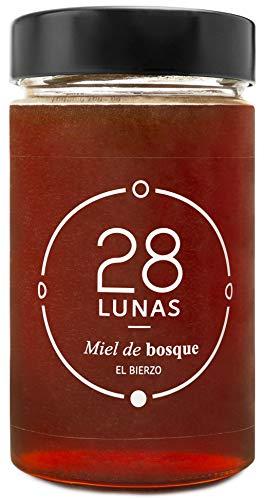 Miel de Bosque - 100% Natural Pura de Abeja, Cruda, 1Kg - Or