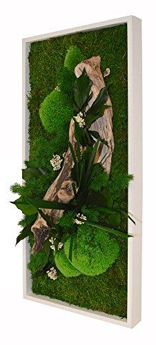 FLOWERBOX Décoration Murale Végétal...