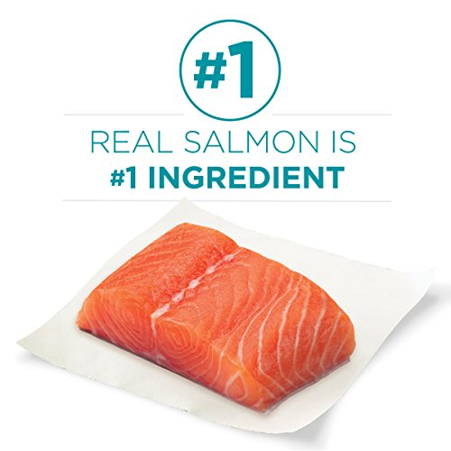 Product Image 4: Purina ONE Natural Dry Cat Food, Tender Selects Blend With Real Salmon - 22 lb. Bag