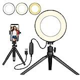 UNIQUE BRIGHT Beauty LED Ring Light 6' Dimmable Selfie Light Maquillage Photographie Éclairage Mini Cercle Lampe de Bureau avec Support de téléphone Portable...