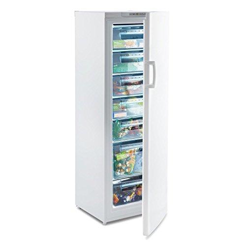 Klarstein Iceblokk 225 - congelatore a 4 stelle, 212 litri freezer, 7 livelli, 170 cm di altezza,...