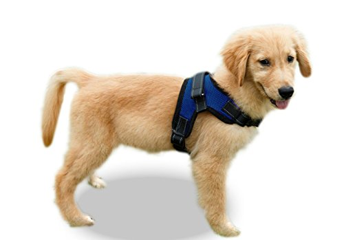Copatchy No Pull Reflective Adjustable Dog Harness with Handle (Medium Blue)