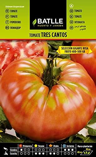 Semillas Hortícolas - Tomate Tres Cantos Gigante rosa - Batlle