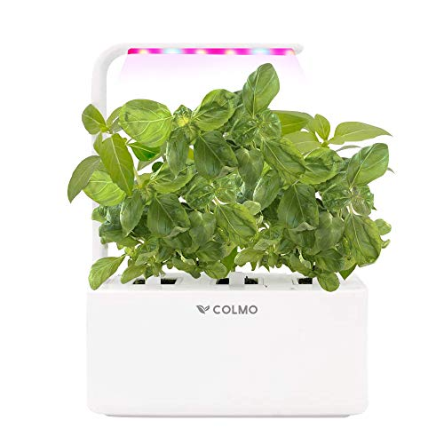 COLMO Potager d'Intérieur Smart Garden- Jardin Autonome Intelligent Contient du Basilic et de la coriandre avec Spectrum LED hydroponique Auto-arrosant