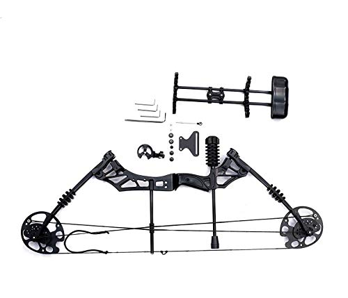 IRIS 30-60lbs Compound Bow Kit with 5 Pin Lighted Sight, 6 Carbon Arrow, BCY String for Outdoor Sport, Adjustable 16-31 in Draw Length and IBO 320 FPS