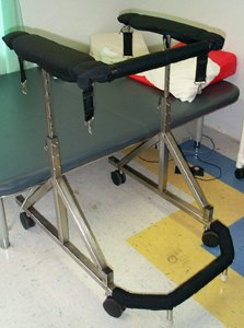 Second Step - Complete Gait Harness System