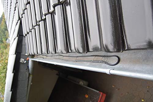 Frostschutz Heizkabel Dachrinnenheizung IP 8, 10 m Länge
