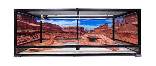Carolina Custom Cages Terrarium, Extra-Long, 48Lx18Dx18H, Easy...
