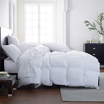 The Ultimate All Season Comforter Deal Hotel Luxury Down Alternative Comforter Duvet Insert with Tabs Washable and Hypoallergenic (Queen)