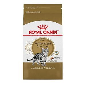 Royal Canin American Shorthair Breed Adult Dry Cat Food, 5.5 lb.