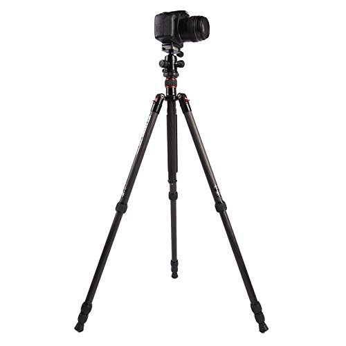 Carema treppiedi e Supporti, triopo gt-2504x8. c Regolabile in Fibra di Carbonio con b - Alluminio treppiedi Portatili Sony DSLR Canon, Nikon Palla Testa di Macchina Fotografica (sku : S-DCA-0418A)