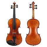 N / C Violín Multifuncional de tamaño Completo 4/4, Todo violín Profesional de Madera Maciza Hecho a Mano, con afinador Fijo, Transparente Tallado a Mano, no es fácil de deformar