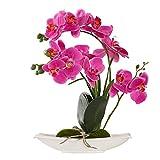 ENCOFT Fleur Artificiel Phalaenopsis Orchidée Plastique en Pot Bonsaï...