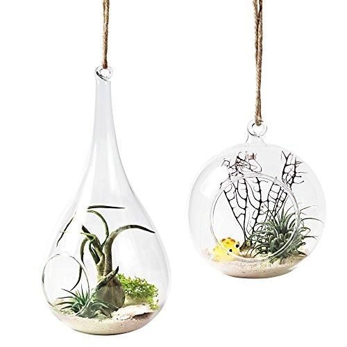 Mkono Glass Hanging Terrarium