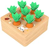 Ancaixin Wooden Toys for 1 Year Old Boys and Girls Montessori Shape Size Sorting Puzzle Carrots Harvest Developmental Gifts for Fine Motor Skill (Carrots Harvest)