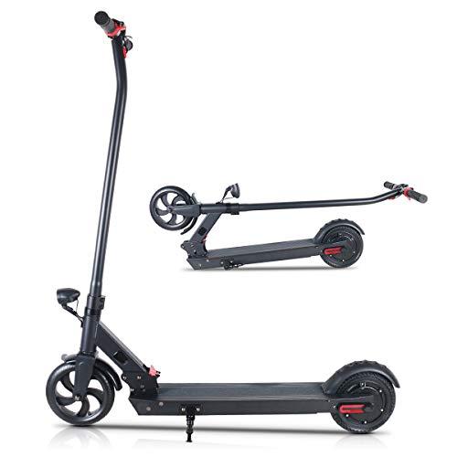 TOEU E-Scooter Faltbarer Elektroroller Erwachsene 25 km/h 250W Motor Electric Scooter (T10-Black)