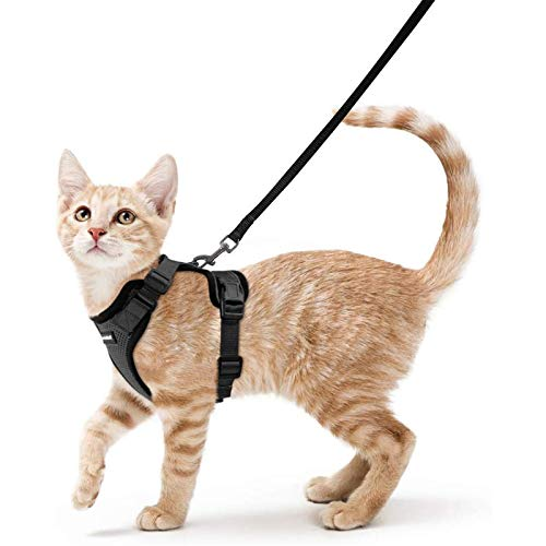 rabbitgoo Cat Harness and Leash for Walking, Escape Proof Soft Adjustable Vest Harnesses for Cats, Easy Control Breathable Reflective Strips Jacket, Black, XS (Chest: Chest: 13.5'-16')