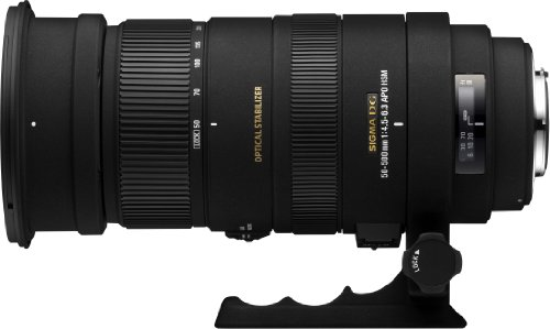 SIGMA 超望遠ズームレンズ APO 50-500mm F4.5-6.3 DG OS HSM キヤノン用 フルサイズ対応 738549