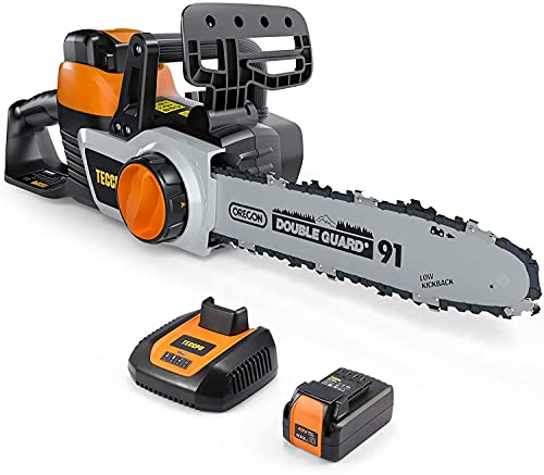 TECCPO Cordless Chainsaw, 40V 12-Inch Electric Chainsaw, High Performance Motor, 2.5Ah Samsung Battery and Charger Included, 26.24ft/s Chain Speed, Oregon Chain, for Cutting Trees and Wood-TDCS01A