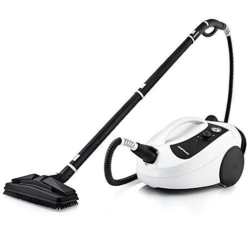 Best Steam Cleaners for Cars 2021