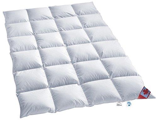 Schäfer Warmes Winter 4 cm Daunen Kassettenstegbett Daunenbett Canada 100% Daune 100% Natur Daunendecke 135x200 cm direkt vom Bettenfachgeschäft