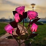 Outdoor Solar Garden...image