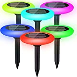 Colorize Solar Lights...image