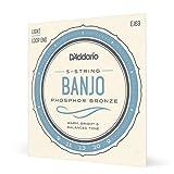 D'Addario EJ69 Jeu de cordes en Phosphor Bronze pour Banjo 5 cordes 9-20...