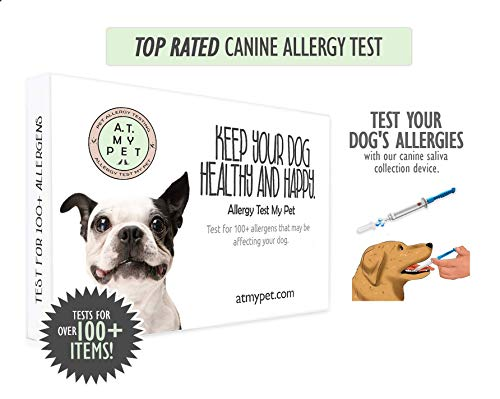 Canine Allergy Test Allergy Test My Pet