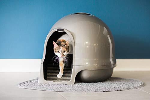 Petmate Booda Dome Clean Step Cat Litter Box 3 Colors, Pearl White