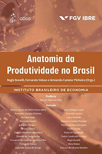 Anatomia da Produtividade no Brasil