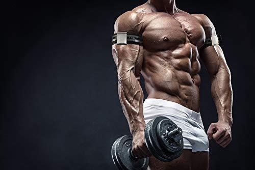 41Q9KMXC tL - Home Fitness Guru