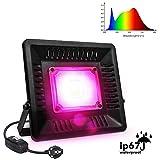 Relassy Lampe de Plante COB LED Lampe Horticole 50W à Spectre Complet,...