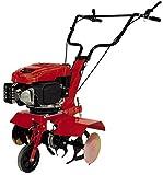 Einhell Benzin-Bodenhacke GC-MT 2560 LD (2.5 kW, bis 230 mm Arbeitstiefe, 1-Zylinder 4-Takt-Motor, robuste Hackmesser, höhenverstellbarer Bremssporn, schwenkbares Führungsrad)