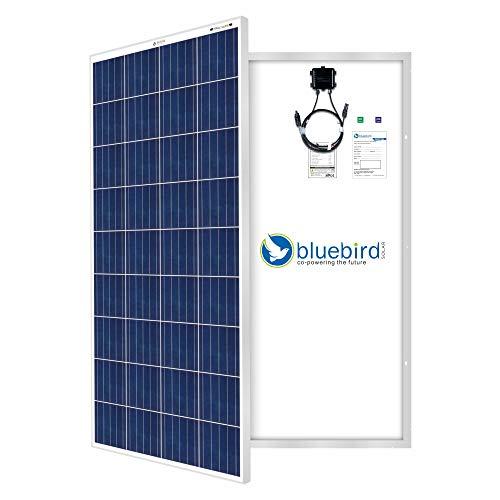 Bluebird Solar 165 Watt - 12 Volt Poly Crystalline Solar Panel | BIS Certified | High Efficiency |...