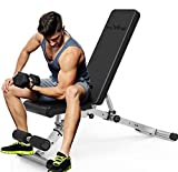 FLYFE Adjustable Weight Bench – Foldable and Compact Workout Bench – Incline and Decline Flat Utility Weight Bench – Strength Training Fitness Bench for Full Body Workout (Sliver/Black)