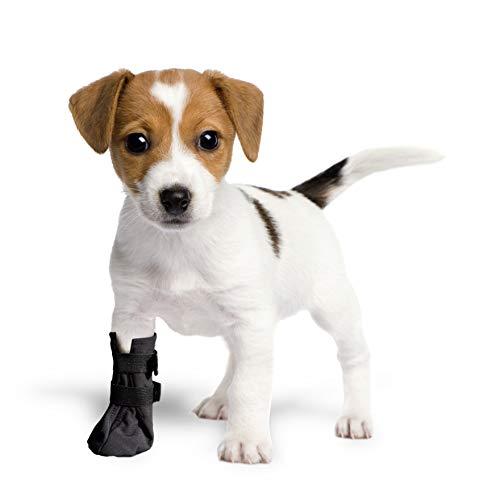 Grande Finale - Calzini di protezione e recupero traspiranti per cani, gatti, 100% Softshell Chirurgical Custodie di protezione da lesioni, Stop Lasting (2 (S) 5 cm (2,0') H 9 cm, Nero)