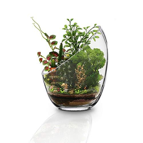 MornBee großes klares Glas-Fischglas, 17,5 x 14 cm, große Öffnung, Glas-Pflanzgefäß, Luftpflanzenhalter, Glas-Terrarium