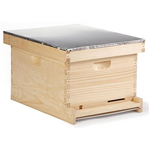 Little Giant 10 Frame Complete Langstroth Beehive