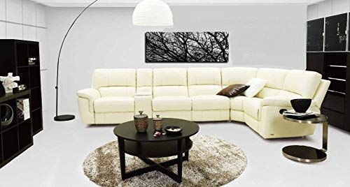 iD-505SRC Top Grain Leather Sectional Sofa Set w/Power Recliner (Ivory)